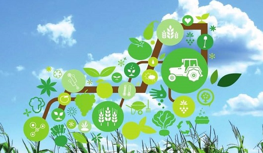 Introduction to the Application of Internet of Things Technology in Agriculture